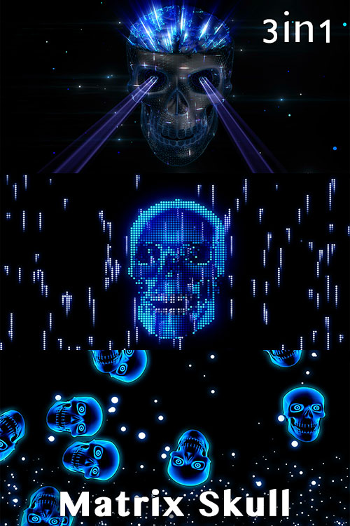 Matrix Skull (3in1)